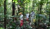 Exkursion Regenwald