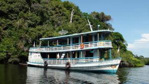 River tours rainforest