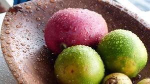 Früchte Amazonas